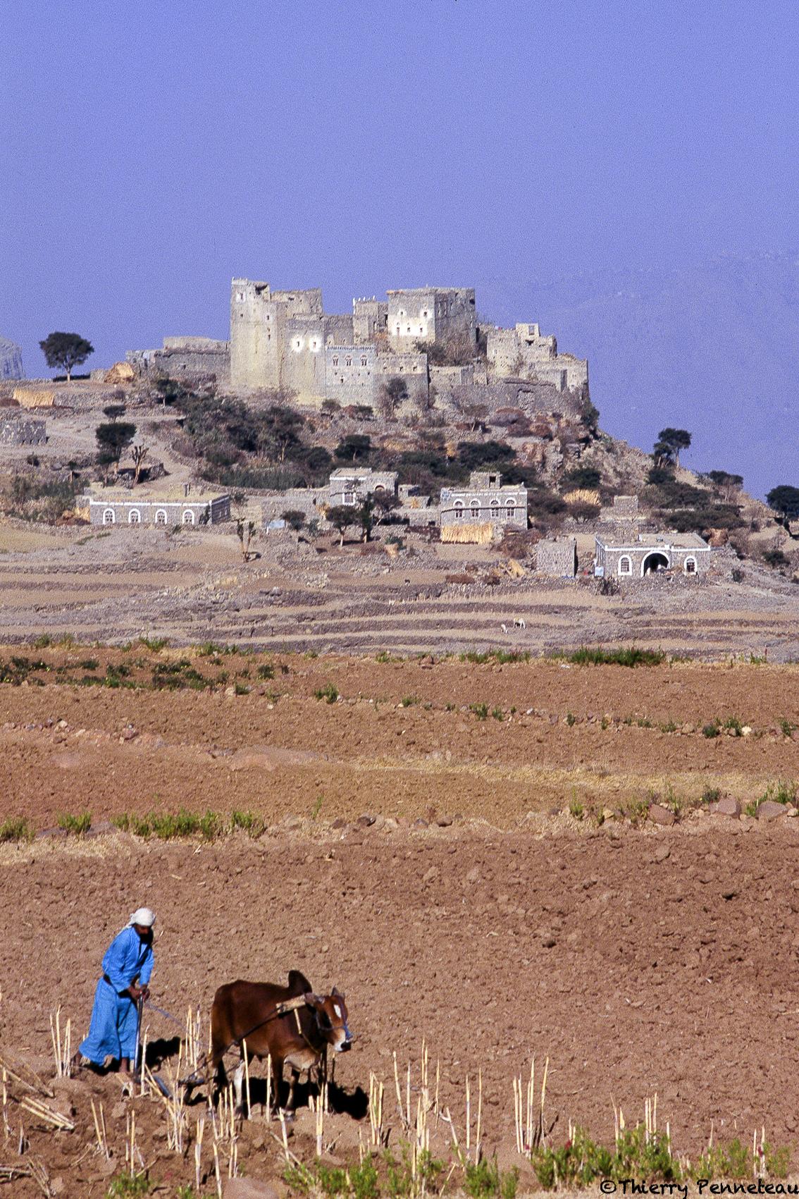 Alhajjara-paysan