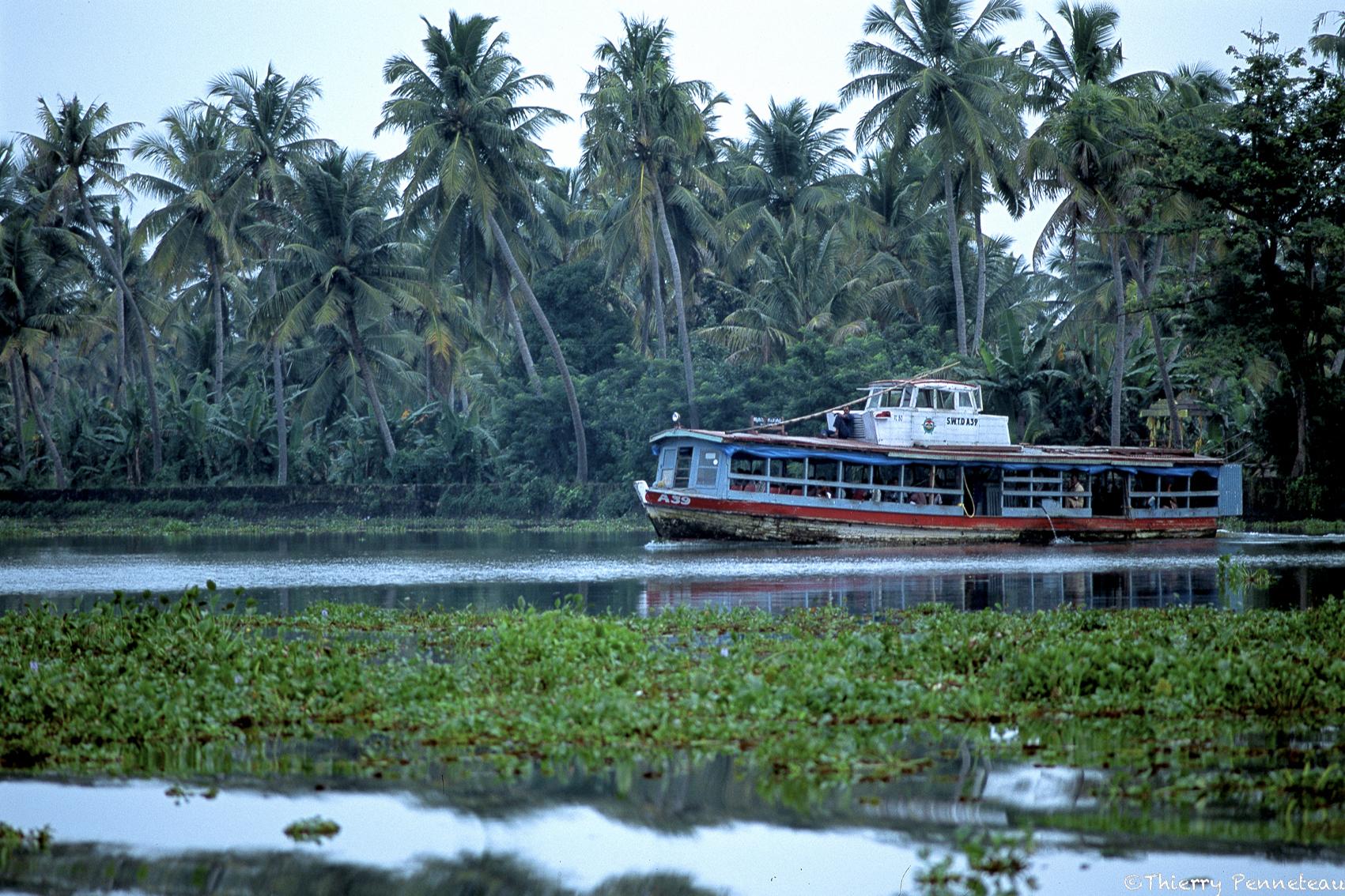Backwater 10 Kerala