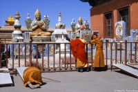 028-Mongolie