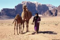 Wadi Run Nomade 1