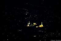 Damas de nuit