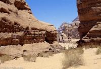 Desert wadi run 3