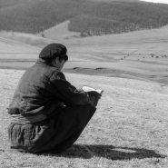 La lecture dans le monde
